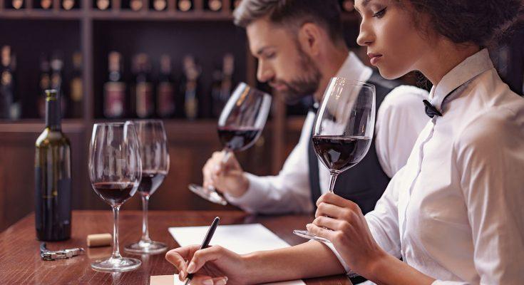 Sommilabour, cursuri de sommelieri și ghid de vinuri